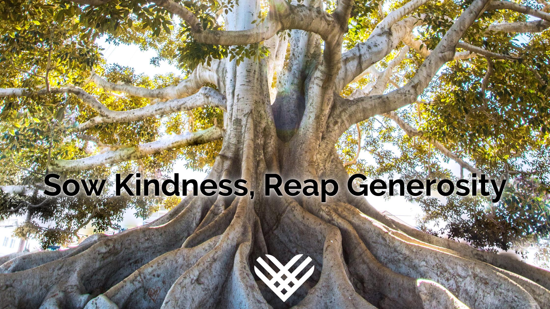 Sow Kindness, Reap Generosity